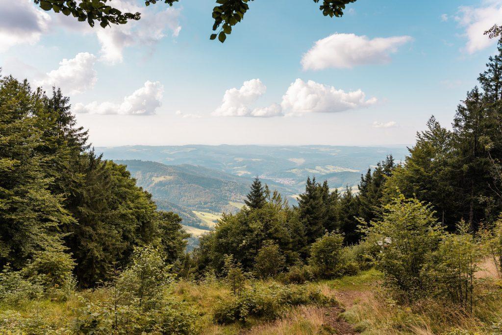 reiseziele herbst schwarzwald deutschland