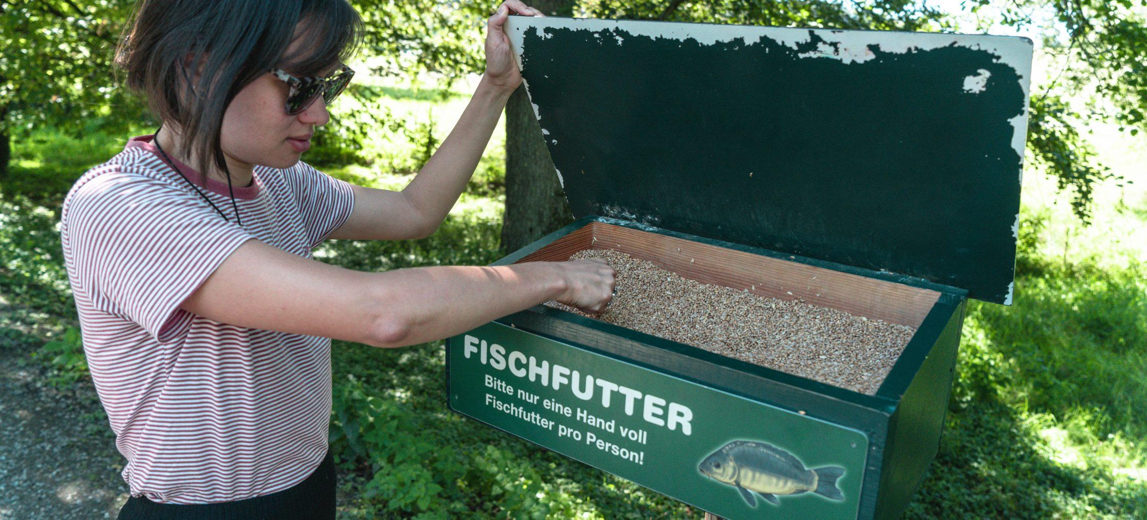 Bodensee Affenberg Frau am Fischfutter herausnehmen