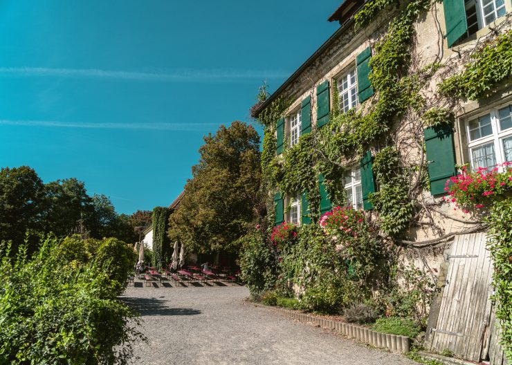Bodensee Affenberg Haus mit Efeu bewachsen