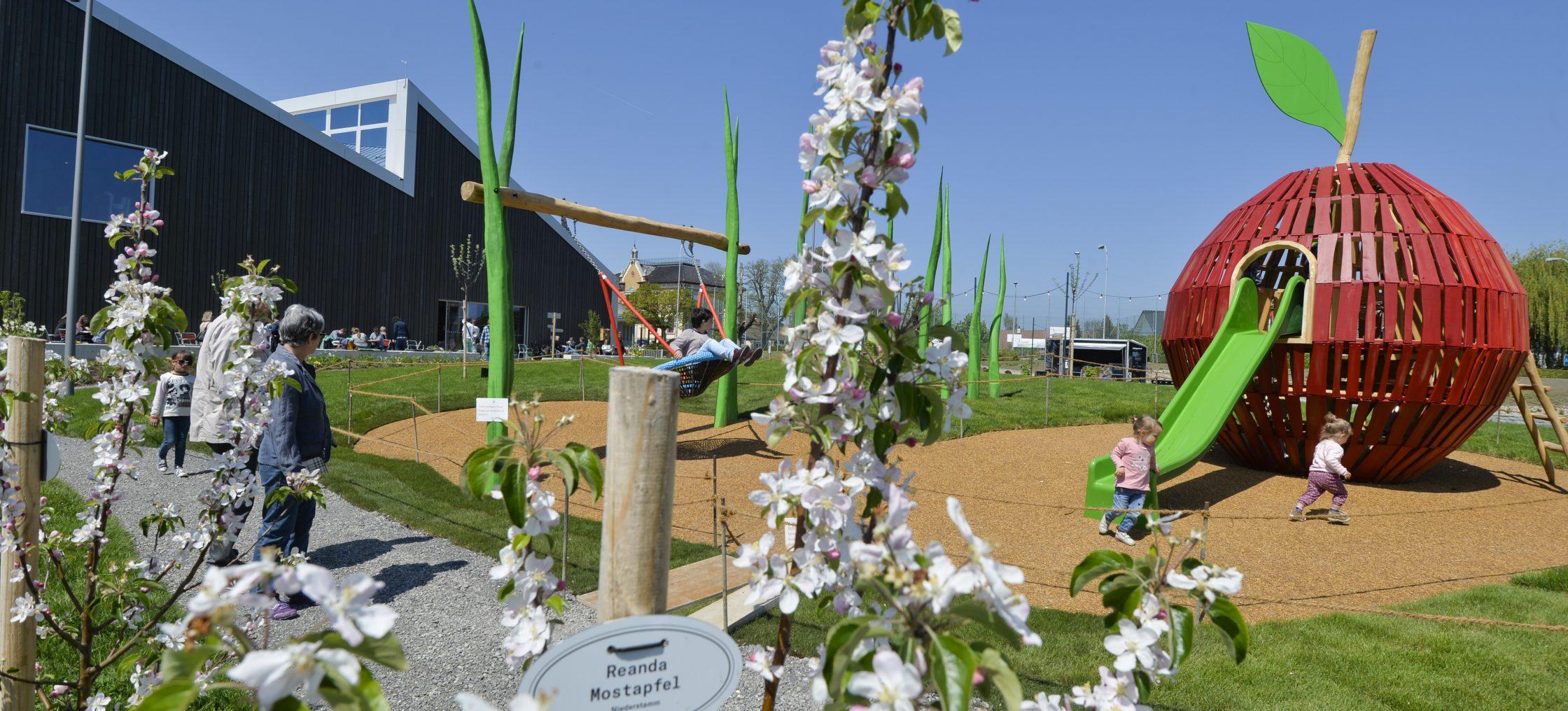 Bodensee Museum Spielplatz mit Rutschbahn, der aus einem Apfel kommt