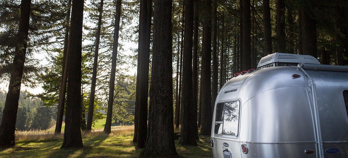 vanabundos 10 gruende wegzufahren camping wald