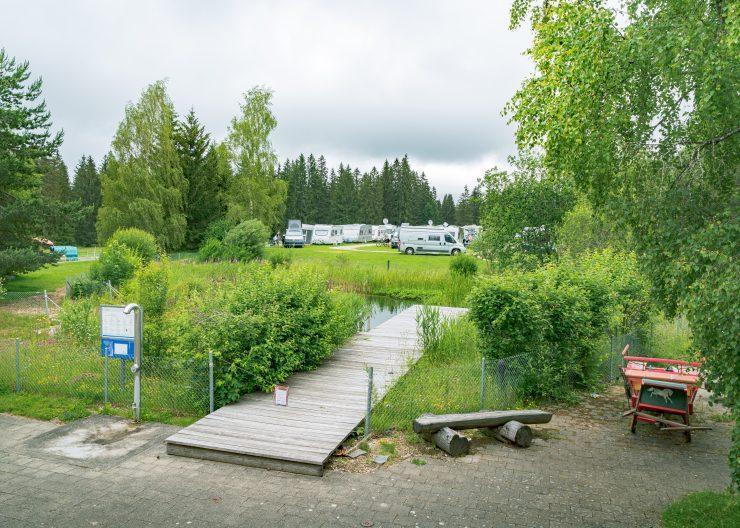 Badeteich mit Steg und vielen Pflanzen - Camping Cerneux - Kanton Jura