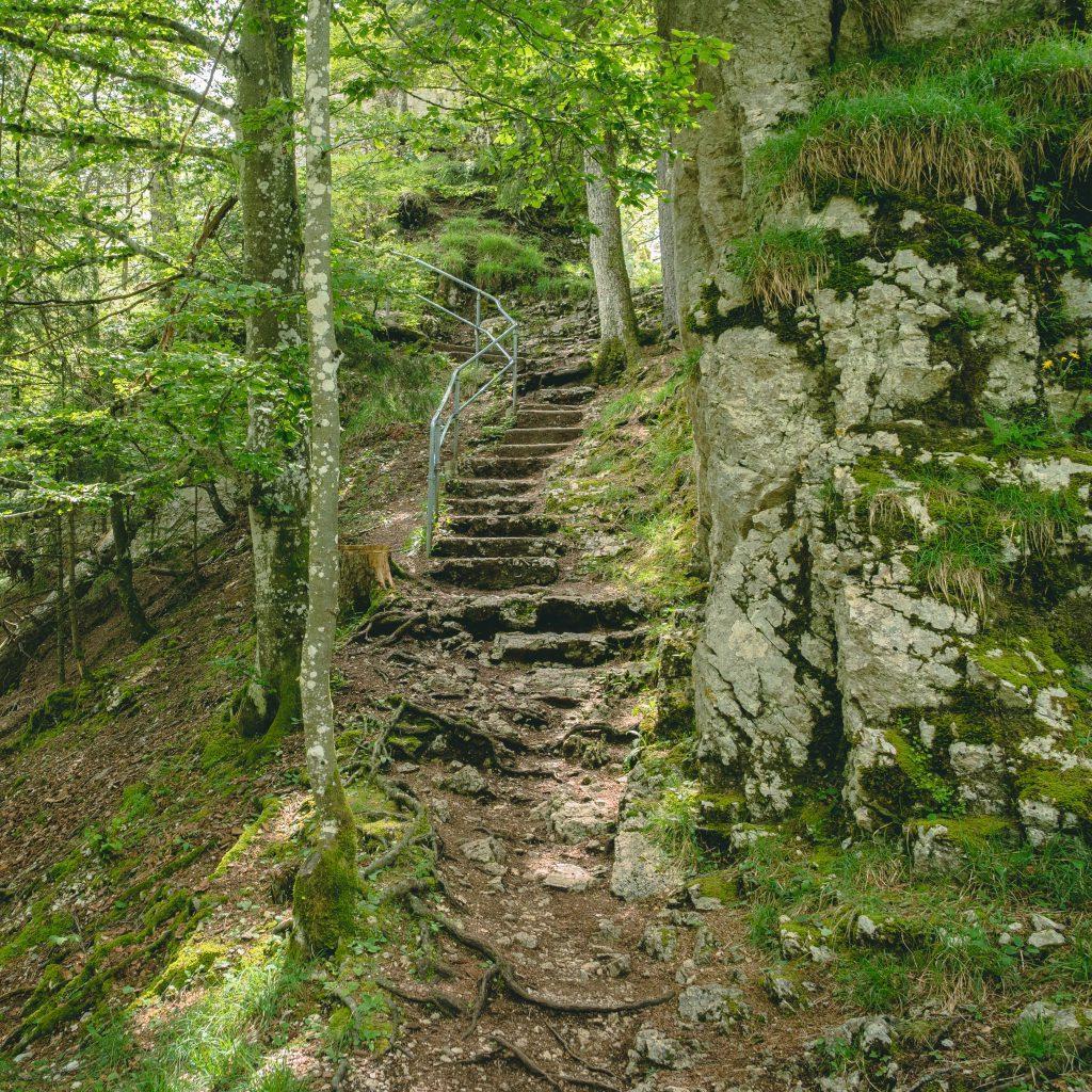 Treppe mit Metallgeländer am Fels entlang im Wald - Wandern Jura