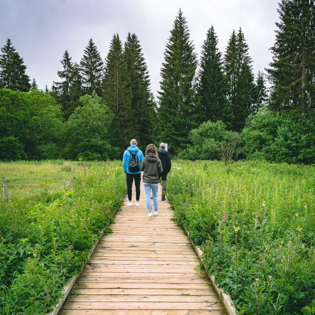 Ein Paar und ein Kollege auf dem Steg zwischen dem Gestrüpp, Wald im Hintergrund - Wandern Jura