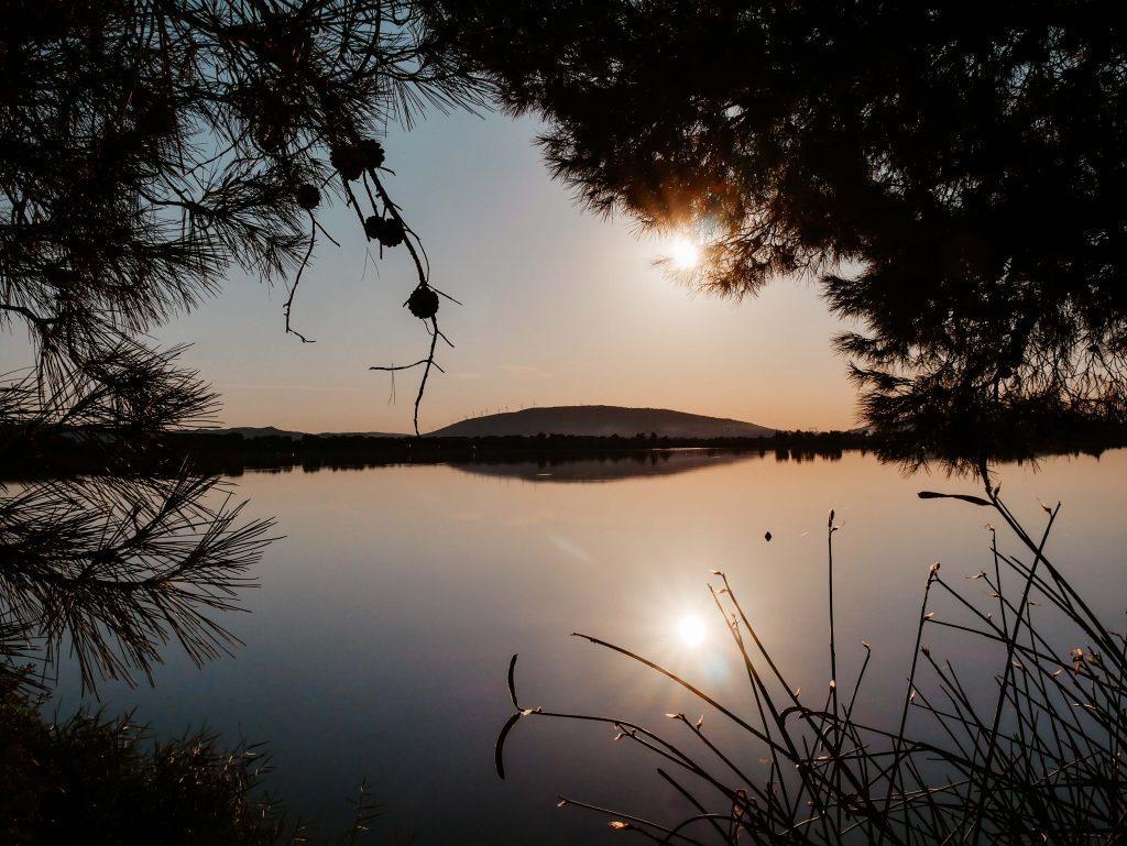 Camping Südfrankreich, Blick aus dem Wald auf den See