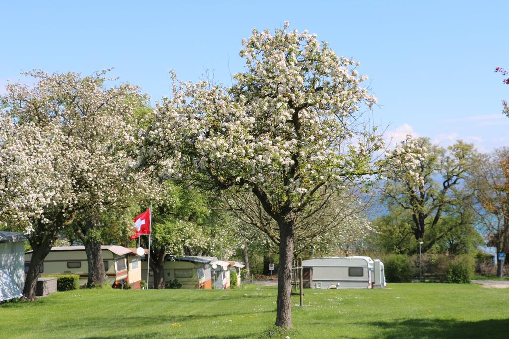 camping ruderbaum ostercamping