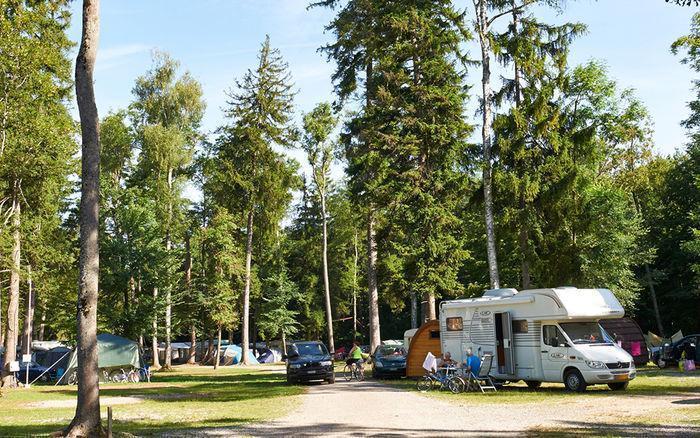 camping am see gampelen